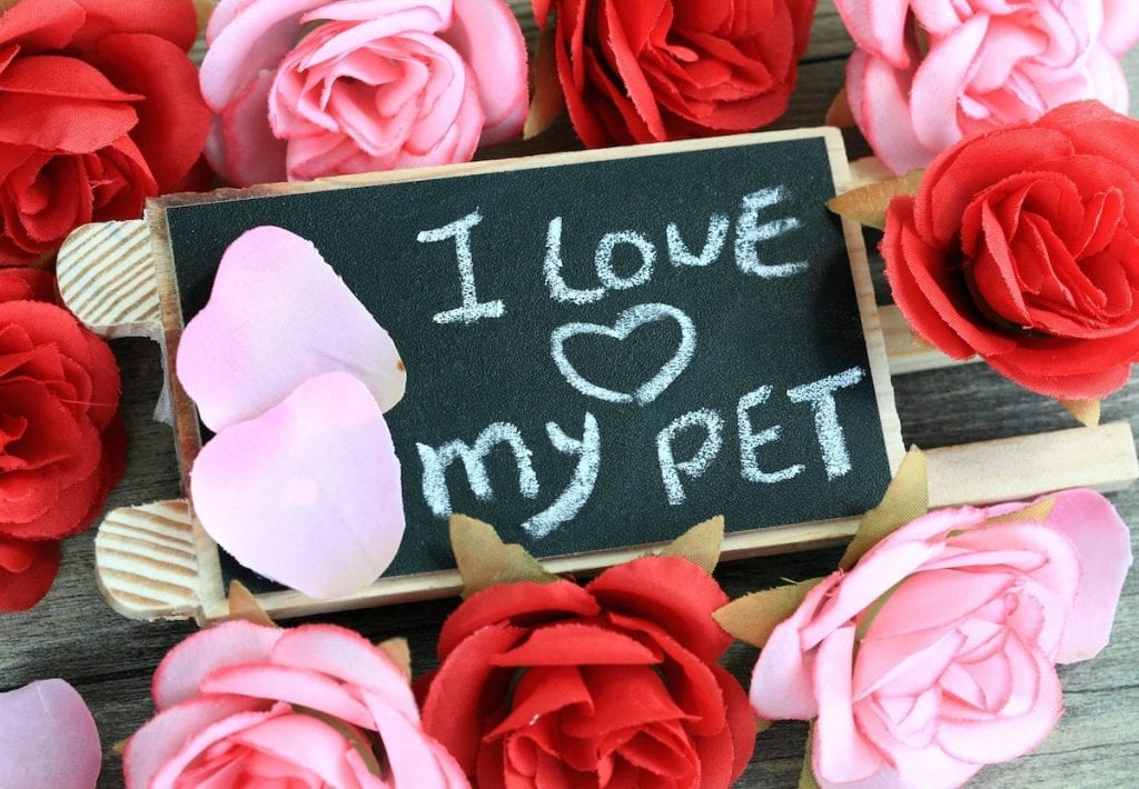 I love my pet sign