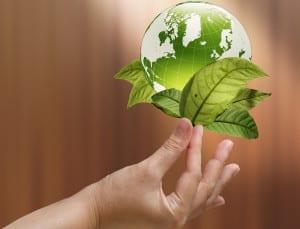 finger holding globe plant 300x229