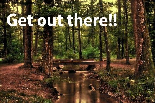 shamamama mini vision quest forest bridge quote