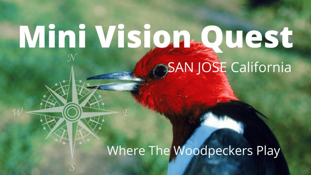 Mini Vision Quest info pic1